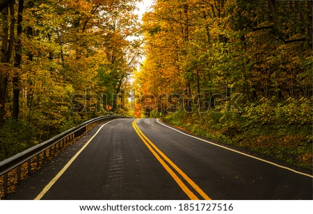 Forest highway road in autumn. Forest road in autumn season. Autumn forest road. Autumn forest road view