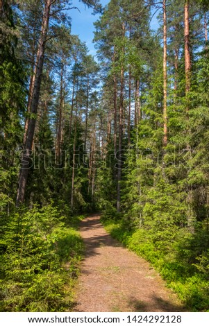 Forest Hiking Trail in a National Park in Latvia #1424292128