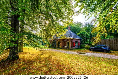Forest house by the road. Autumn forest house