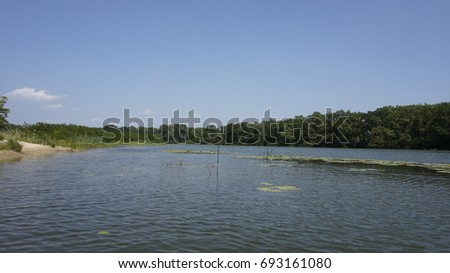 Forest lake Zdjęcia stock ©
