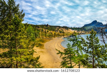 Forest lake beach scene. Lake beach in forest. Forest beach lake view
