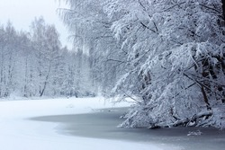 Forest lake in snowfall. Winter landscape of a forest lake.