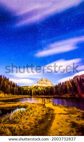 Forest lake in the mountains. Mountain forest lake view. Lake in mountain forest