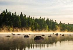 Forest lake (pond) with boulders on surface in misty sunrise in summer. Czech republic, South Bohemia, nature park called