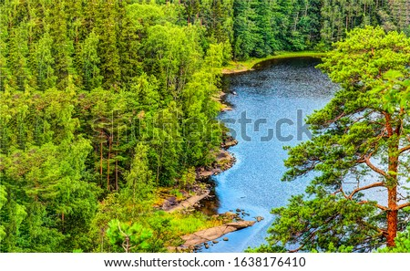 Forest lake top view landscape. Karelia forest lake. Lake in forest