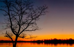 Forest lake tree silhouette at dawn. Sunrise lake water dawn. Dawn lake tree water. Sunrise lake tree silhouette at dawn