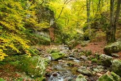 Forest landscape near Fotinovo in Rhodopes Mountain, Pazardzhik region, Bulgaria. Amazing autumn landscape