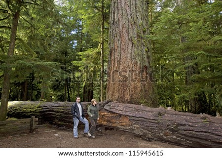 """Forest - MacMillan Park """"Cathedral Grove"""" in Vancouver Island, Canada"""