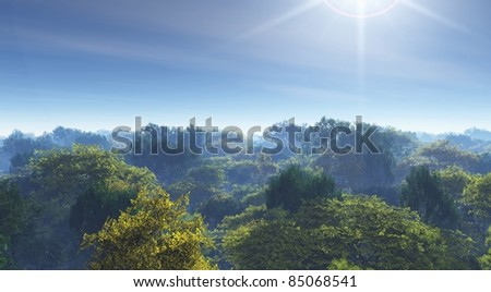 forest mist and sun illustration