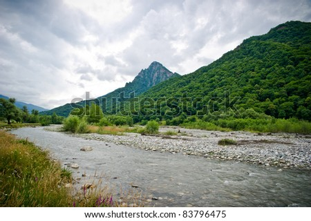 Forest mountain river& mountain river