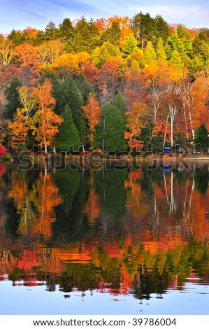 Stock Photo Forest of colorful autumn trees reflecting in calm lake