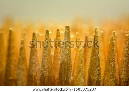 Forest of toothpicks. Macro shot