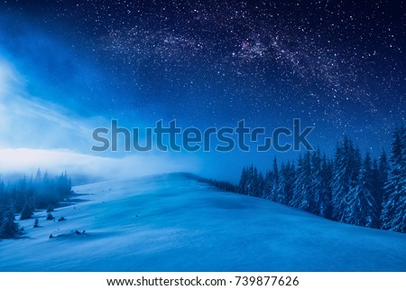 Forest on a mountain ridge covered with snow. Milky way in a starry sky. Christmas winter night. #739877626