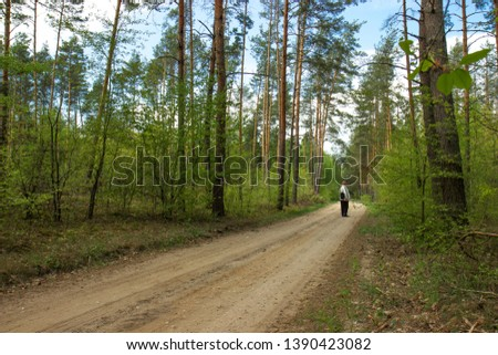 Forest paths and paths in the spring period. #1390423082