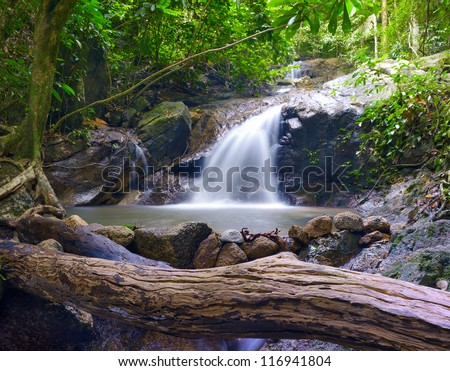 Forest photography background. Beautiful waterfall stream landscape