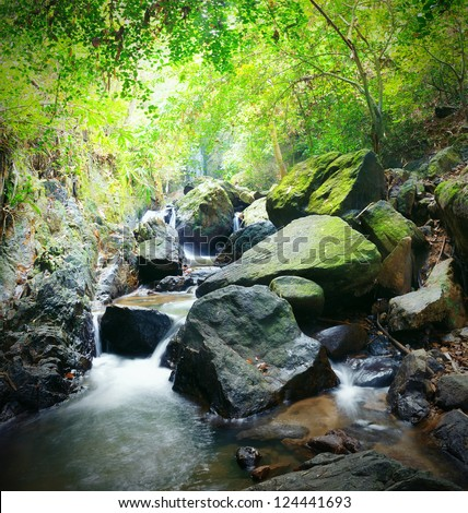 Forest photography, mountain river and mossy stones