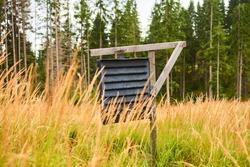 Forest preservation, pheromone trap for bark beetle.