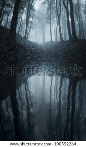 forest reflecting in a lake