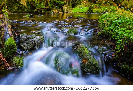 Forest river creek flow view. River creed flowing. Mossy stones in creek water