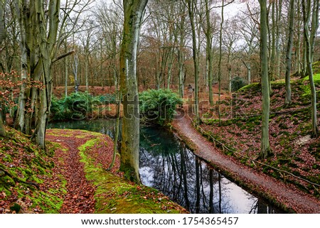 Forest river creek in autumn. Autumn forest creek trail. Autumn forest creek landscape
