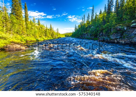 Forest river flow landscape #575340148