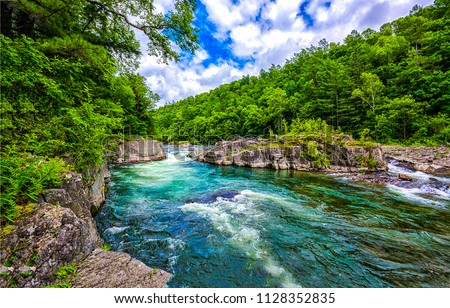 Forest river landscape #1128352835