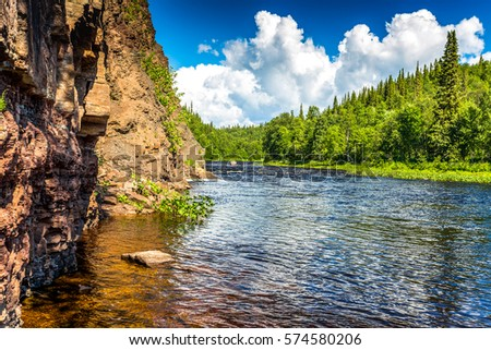 Forest river landscape #574580206