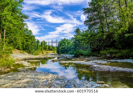 Forest river landscape #601970516