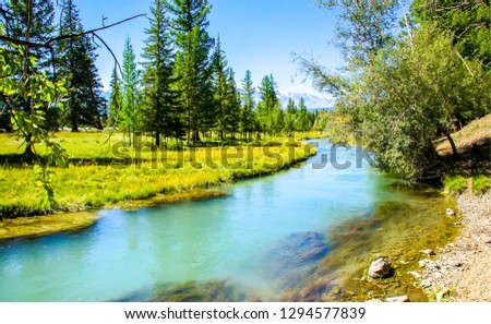 Forest river landscape. River forest view. Forest river summer scene. Forest river water #1294577839