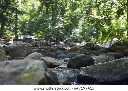 forest river landscape with rocks #649197415