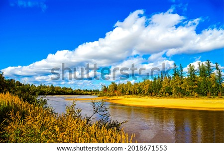 Forest river on a clear sunny day. Autumn forest river landscape. River in autumn nature scene. Autumn river landscape