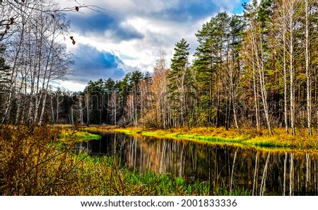Forest river on an autumn morning. Autumn forest river landscape. River in autumn forest
