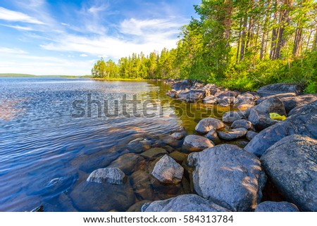 Forest river rocks landscape #584313784