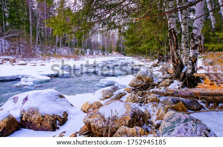 Forest river rocks snow view. Snow covered river rocks view