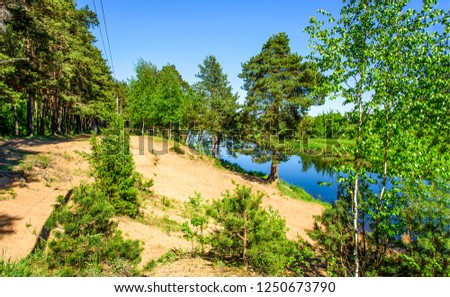 Forest river sand shore view. Forest river shore. Sandy shore forest river scene. Forest river shore view