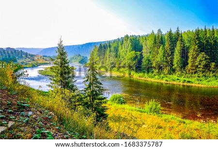 Forest river shore landscape. River in forest. Forest river landscape