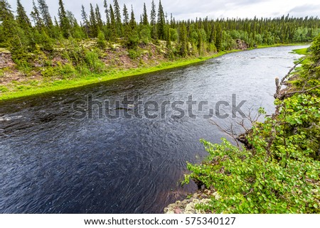 Forest river top view landscape #575340127