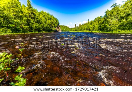 Forest river water flow view. Summer river flow landscape. River in summer