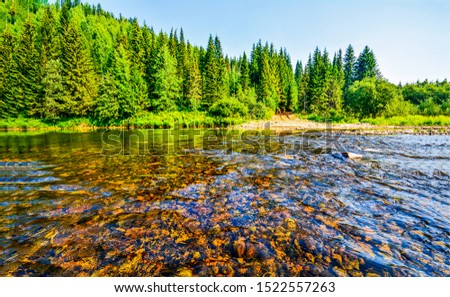 Forest river water flowing view. River forest landscape. Forest river landscape. Forest river water view