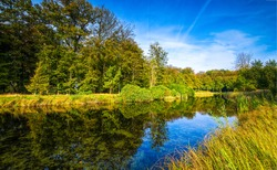 Forest river water reflection landscape. River forest scene. Forest river reflection. Forest river water