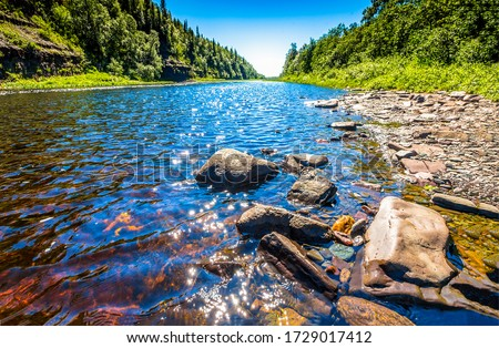 Forest river water stones view. Summer river nature landscape. River rocks scene