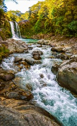 Forest river waterfall flow view. Autumn forest river stream waterfall. River waterfall in forest. Vertical scene river waterfall