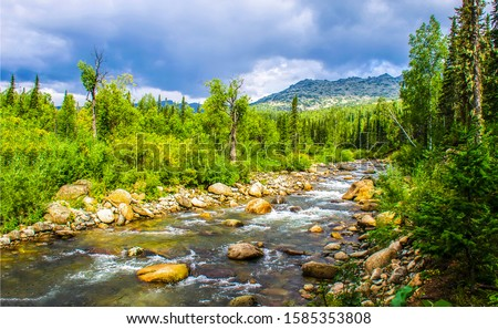 Forest river wild flow landscape. Nature river flowing landscape. Mountain forest river valley landscape. Forest river wild flowing view