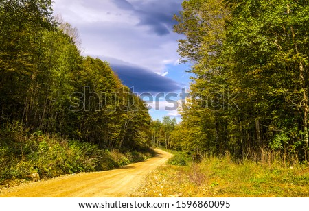 Forest road cloudy sky view. Road in forest. Forest road. Autumn forest road view