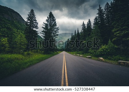 Forest road on a cloudy day. Glacier National Park, Montana, USA #527338447