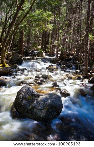 Forest scene with smooth water creek in Yosemite California