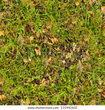 Forest Soil with Grass. Seamless Tileable Texture.
