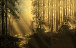 Forest sunbeams in the morning. Forest sunbeams scene. Forest trail sunbeams. Sunbeams forest trail