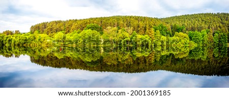 Forest trees are reflected in the lake water. Forest river panorama. Panorama of forest river