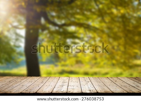 Shutterstock forest trees. nature green wood backgrounds